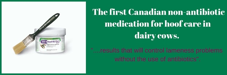 Canadian Non Antibiotic Medication Hoof Care