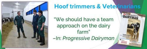 Hoof Trimmers and Veterinarians Can Work Better Together
