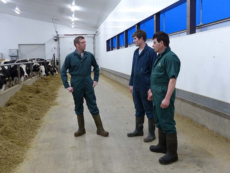 Koos Vis and Emil Sabau Interview with the Progressive Dairyman